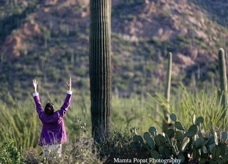SaguaroBall-WEB-22.jpg